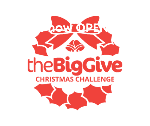 The Big Give Christmas Campaign logo in red.